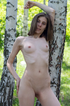 MetModels - Anna R - Slender tree by Thierry Murrell