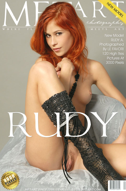'Presenting Rudy' by Andre Le Favori